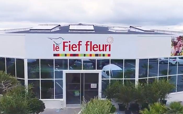 fieffleuri
