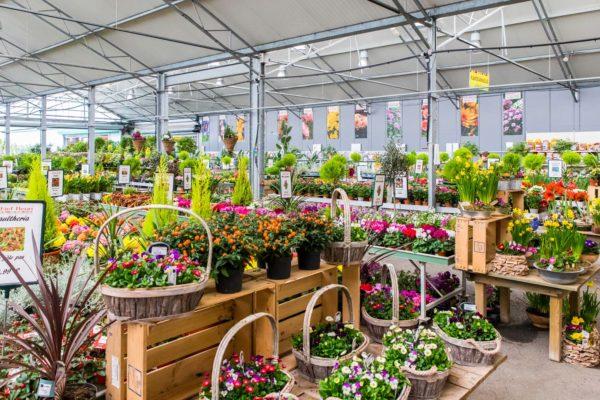 marché au fleurs